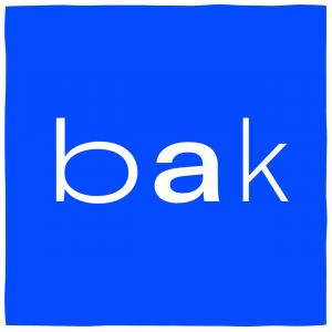 BAK - Basis voor actuele kunst